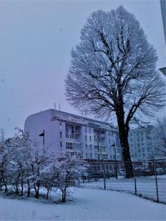 ▲ウィーン市内の初雪風景(2017年11月30日、ウィーン市16区で撮影)